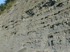 Mississippian Borden Formation, prodelta and shales, I 64 just east of Morehead, Kentucky