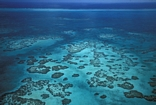 Patch reefs to the lea of the Belize Barrier Reef: photo National Geographic