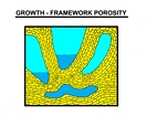 Growth Framework Porosity