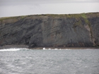 Exposures of Upper Clare Shale overlain by Ross Formation in the cliffs west of Bromore West and Drom in Co Kerry. These Namurian outcrops are south of Kilconly best seen from the Shannon Estuary. The shales evolve upward in depositional setting from a deeper euxinic setting with an influx of shales that upward change to turbiditic sands (Rider, 1969, and Martinsen, 1989).