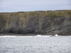 Exposures of Lower to Middle Ross Formation in the cliffs west and south of Drom in Co Kerry. These Namurian outcrops are south of Kilconly best seen from the Shannon Estuary. The depositional setting is expressed by the turbiditic sands of the cliffs(Rider, 1969, Martinsen, 1989; and Pyles, 2007).
