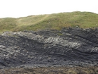 Exposures of Ross Formation in the cliffs northwest of Drom in Co Kerry. These Namurian outcrops turbiditic sands extend northwest from the ruined Castle at Leck Point and are best seen from the Shannon Estuary (Rider, 1969, Martinsen, 1989; and Pyles, 2007).