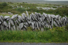 Stone walls built of the limestones of the Burren approx 5km south of Ballyvaughan Co Clare Ireland. Exposures of the Dinantian Burren Limestone Formation are composed of shallow water carbonates. Note the clints (limestone blocks) and grikes (joints formed by Variscan folding (Coller, 1984) and fracturing) enlarged by Pleistocene disolution (Williams, 1966).