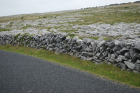 Stone walls and karst pavements and topography of the Burren approx 5km south of Ballyvaughan Co Clare Ireland. Exposures of the Dinantian Burren Limestone Formation are composed of shallow water carbonates. Note the clints (limestone blocks) and grikes (joints formed by Variscan folding (Coller, 1984) and fracturing) enlarged by Pleistocene disolution (Williams, 1966).