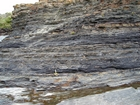 Condensed deeper water sections with Goniatite fauna in the Ross Formation of Dunmore Bay