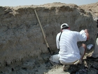 Burrows and marine plant roots beside Fabien Kenig examining the Musafa Channel Section Abu Dhabi