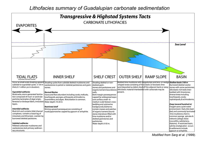 evolution of sequence stratigraphy Sequence stratigraphy is a relatively new branch of geology that attempts to link   scale of human impact on planet has changed course of earth's history,.